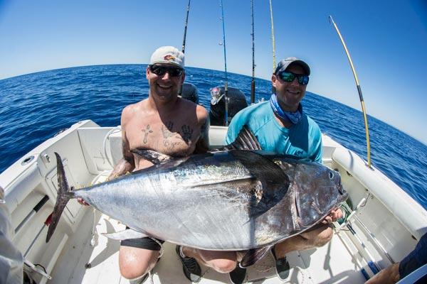 Tuna fishing Palermo