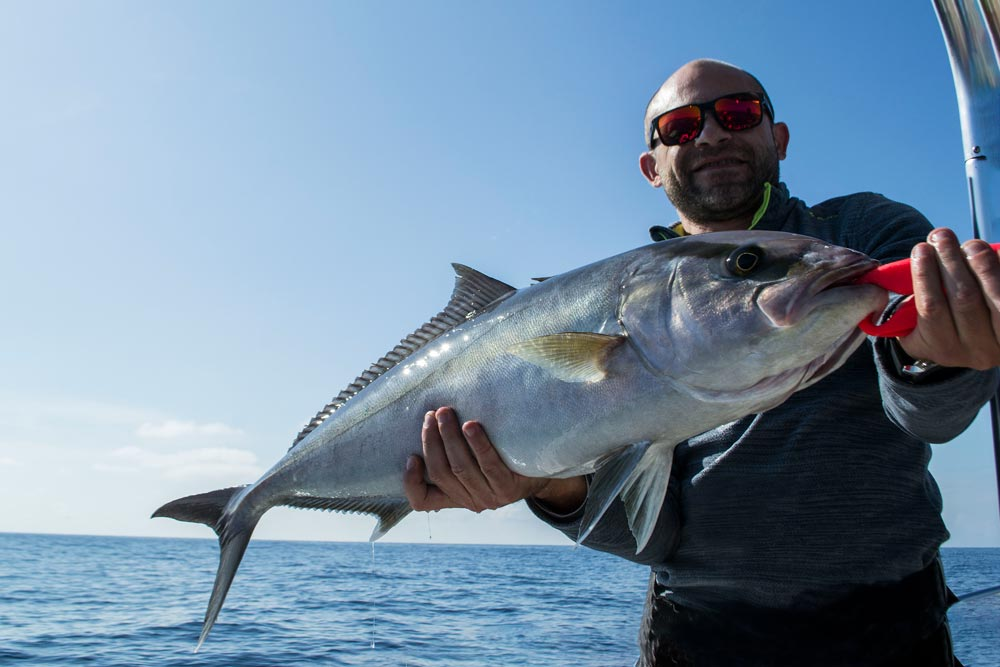 Amberjack fishing in Palermo