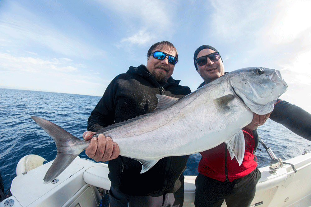 Amberjack fishing in Sicily